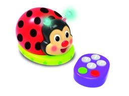 201152_Code_and_Learn_Ladybug_Product